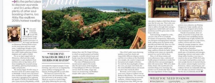 Healthy Magazine UK: Paradise Found