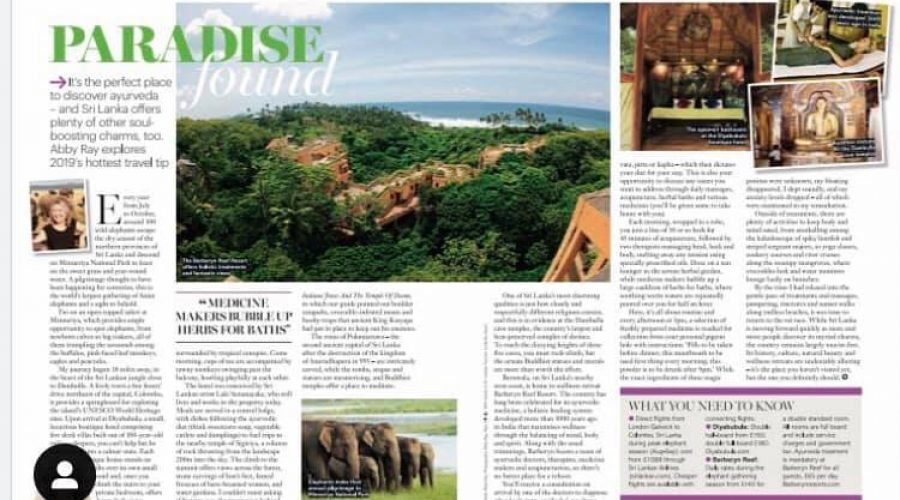 Healthy Magazine UK: Paradise Found