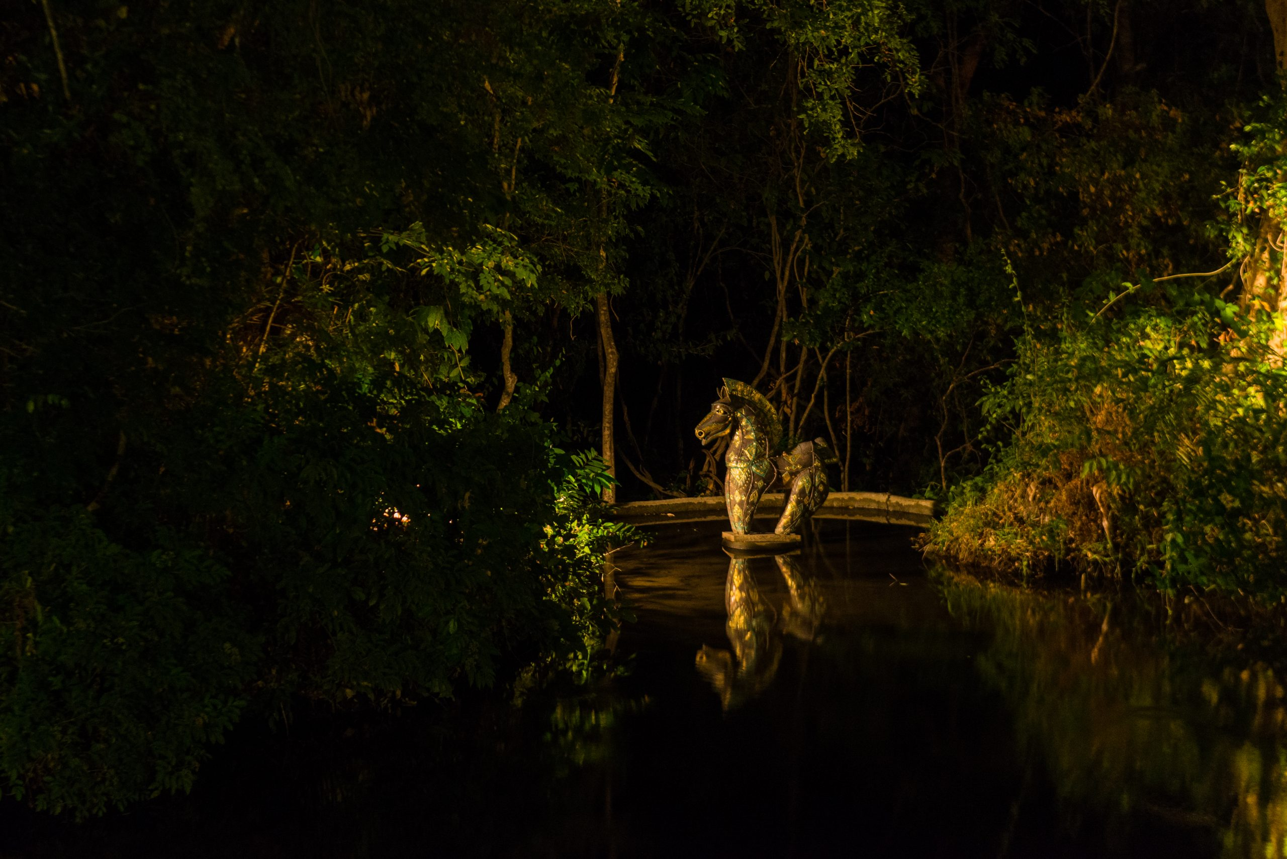 Horse sculpture located in the art and nature forest at Diyabubula. This image taken at the night has captured the water, greenery of the forest and the beautiful golden sculpture